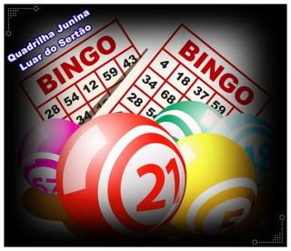 Resultado de imagem para bingo no sertão